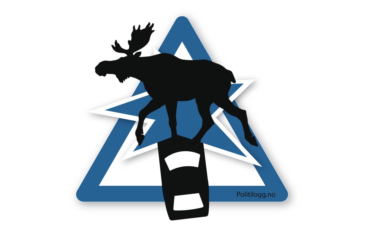 Kollisjon med elg. Illustrasjon: Robin Lund